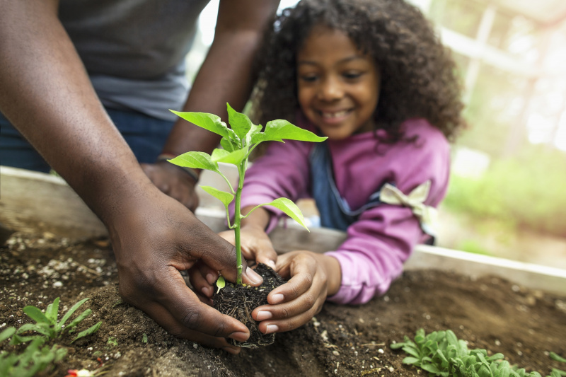 Helping Your Child Connect With Nature